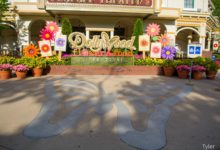 Photo of Foodie Fun: A Look at Dollywood's Flower and Food Festival Foods